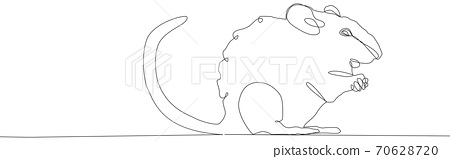 Rat mouse continuous line drawing. One hand drawn single lineart style. 70628720