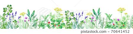 藥草園的水彩例證在白色背景的。水平(無縫模式) 70641452