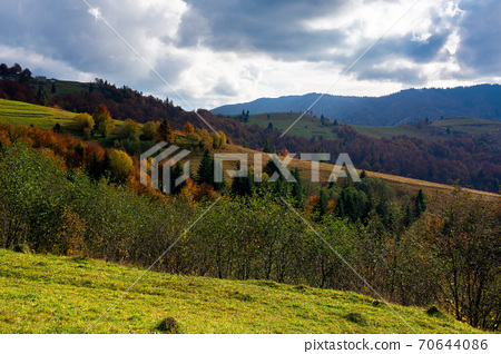 mountainous countryside landscape in autumn. beautiful scenery with forested rolling hills in fall colours. carpathian rural landscape. sunny day with clouds on the sky 70644086
