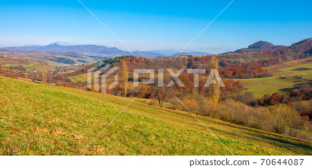 mountainous countryside on a sunny day. trees in colorful foliage on the grassy hills. ridge in the distance beneath a cloudless blue sky 70644087