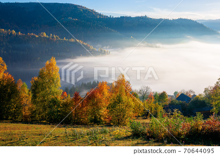 stunning rural landscape. foggy scenery at sunrise in autumn season. trees on mountain hills in colorful foliage. village in the valley 70644095