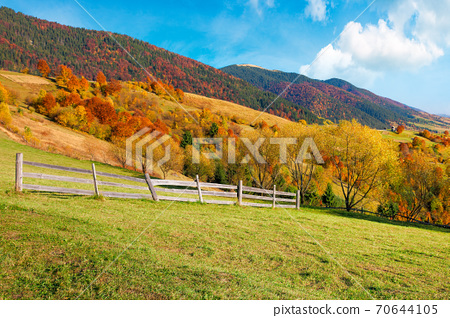 rural landscape in mountains. fence on the hill. scenery in fall colors. beautiful sunny weather with fluffy clouds on the sky 70644105