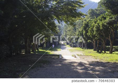 갑산 삼림 공원 70646383