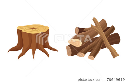 Firewood and Wooden Material Used for Fuel Vector Set 70649619