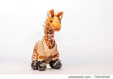 Toy giraffe isolated on white background 70649986