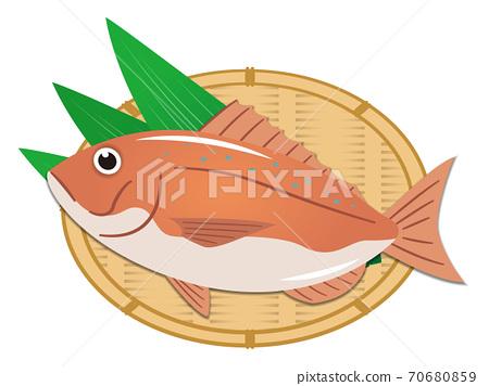 鯛魚的插圖 70680859