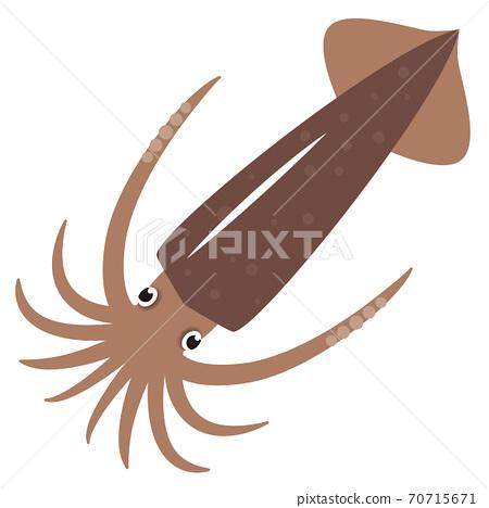 魷魚圖 70715671