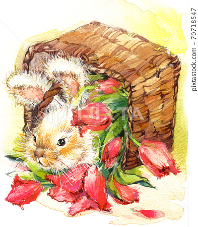 cute bunny. vintage watercolor background with little rabbit 70718547