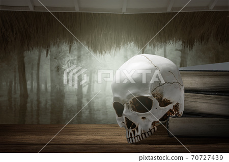 Pile of the book with a human skull with haunted forest background 70727439