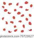 飛舞的花瓣(紅色)的插圖 70729027