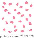 飛花瓣(粉紅色)的插圖 70729029