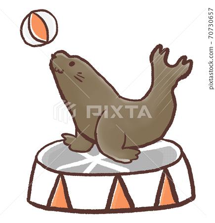 R: More fairy tale sea lion show B 70730657