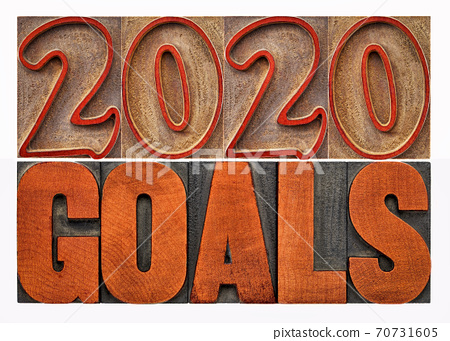 2020 goals word abstract in wood type 70731605