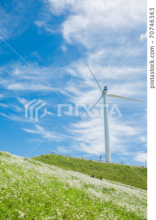 Beautiful mountain landscape, blue sky over hillside meadow 029 70746363