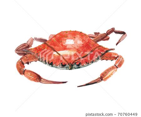 Watari蟹Zagami 70760449