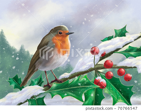 European robin perched on a branch in a snowy landscape 70766547
