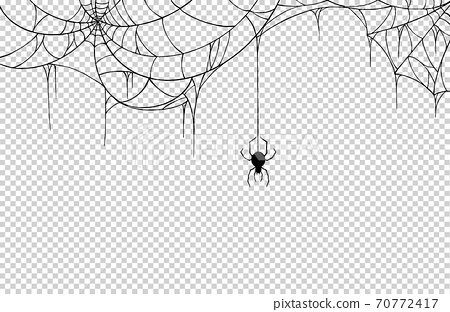 Spider  hanging from spiderwebs isolate on png or transparent  background, graphic resources, vector illustration. 70772417