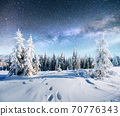 Dairy Star Trek in the winter woods. Dramatic and picturesque scene. In anticipation of the holiday. 70776343
