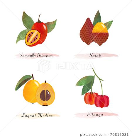 Organic nature healthy food fruit tamarillo betaceum salak loquat medlar pitanga 70812081