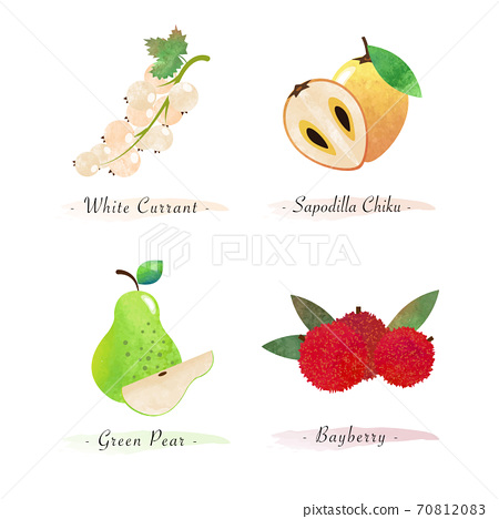 Organic nature healthy food fruit white currant sapodilla chiku green pear bayberry 70812083