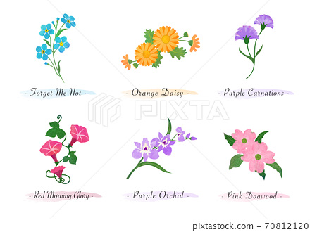 Watercolor botanic garden nature plant flower forget me not daisy carnation morning glory orchid dogwood 70812120