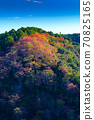 Autumn leaves of Yoshino mountain 70825165