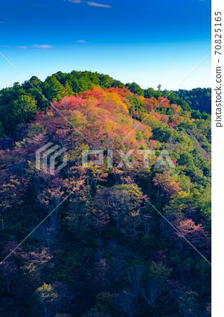 요시노 산의 단풍 70825165