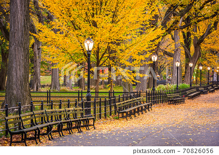 Central Park at The Mall in New York City 70826056