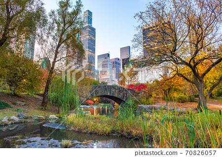 Central Park during autumn in New York City 70826057