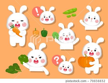 兔子的卡通漫畫插畫表情跟各種蔬菜 70838832