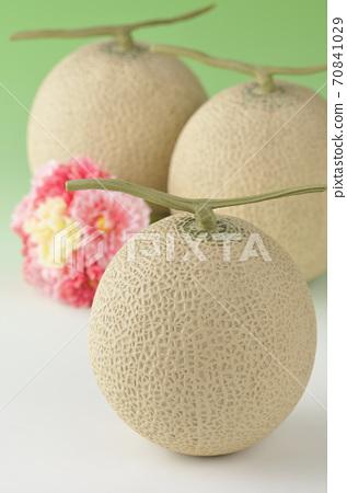 melon 70841029
