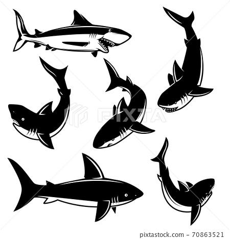 Set of shark illustrations. Design element for poster, print, emblem, sign. 70863521