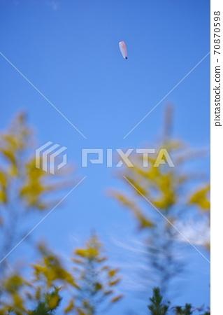 치바현 富津岬의 패러 글라이더 70870598