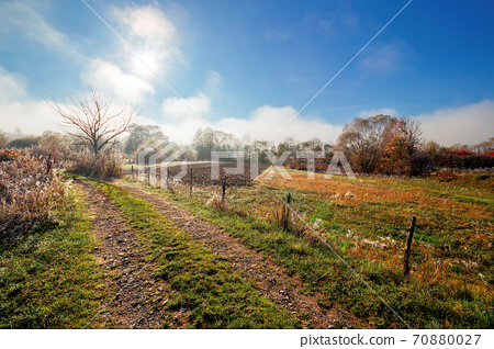 rural landscape on a foggy sunrise. beautiful countryside scenery in autumn season. leafless tree along the fence by the road. bright sunny morning 70880027