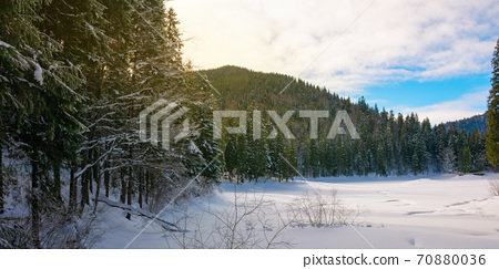 snow covered mountain lake among the forest. green spruce trees on the shore. beautiful sunny weather. clouds on the sky 70880036