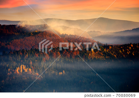 dramatic autumn dawn in mountains. beautiful nature background. fog above the forested hills in red foliage 70880069