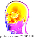 3d rendering illustraion of upper skull 70885218