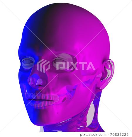 3d rendering illustraion of upper skull 70885223