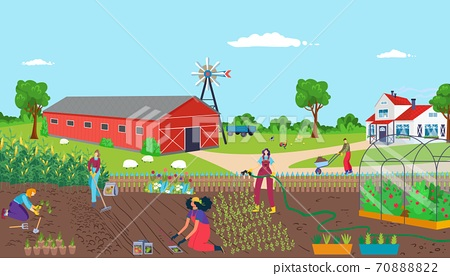 Group teamwork community, cooperation growth and produce team worker vector illustration. Graphic hobby, job together and eco gathering outside 70888822