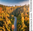 Aerial view of mountain road in forest at sunset in autumn 70900869