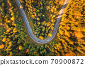 Aerial view of mountain road in forest at sunset in autumn 70900872