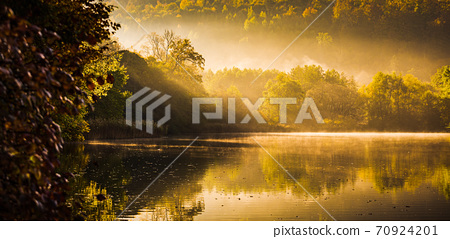 Lake fog landscape with Autumn foliage and tree reflections in Styria, Thal, Austria 70924201