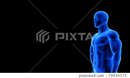 male fitness body - muscle mass building illustration on black background 70930575