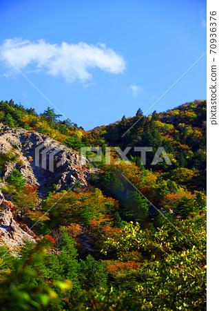Autumn leaves, autumn, autumn colors, [October] in Komono, Mie-gun, Mie Prefecture 70936376