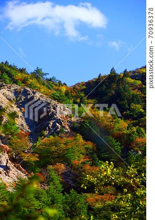 Autumn leaves, autumn, autumn colors, [October] in Komono, Mie-gun, Mie Prefecture 70936378