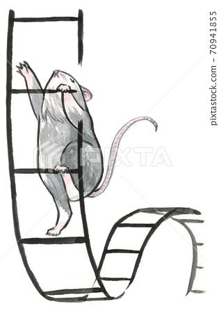 Mouse climbs 70941855