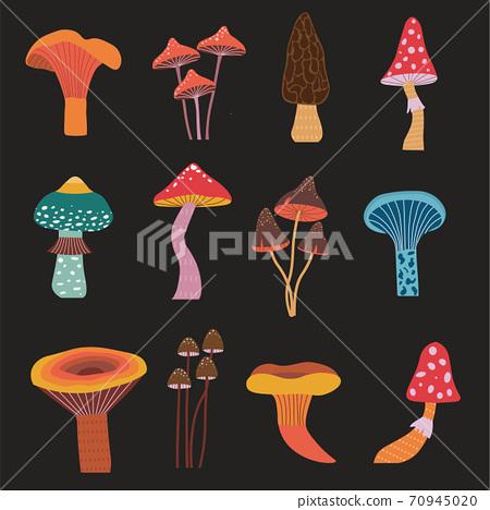 Cartoon Forest Mushrooms Hand Drawn Icons Set 70945020