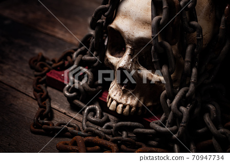 Still life of human skull that died for a long times ,concept of horror or thriller movies of scary crime scene ,Halloween theme, visual art 70947734