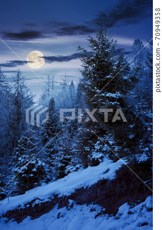 forest on a misty night. trees in hoarfrost. beautiful winter scenery in foggy weather in full moon light 70949358