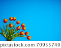 Tulips flowers on natural background. 70955740